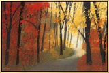 Autumn Road Framed Canvas Print by Lynn Krause