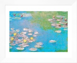 Water Lilies, c.1908 (detail) Framed Canvas Print by Claude Monet