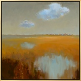 Reflecting Clouds Framed Canvas Print by Jan Groenhart