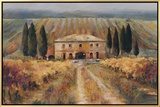 Toscan Vigna Framed Canvas Print by Marilyn Hageman