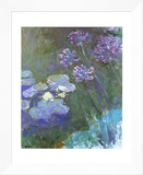 Water Lilies and Agapanthus Framed Canvas Print by Claude Monet