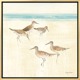 Sand Pipers Square I Framed Canvas Print by Avery Tillmon
