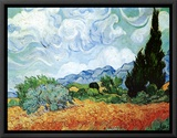 Yellow Wheat and Cypresses Framed Canvas Print by Vincent van Gogh