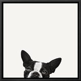 Loyalty Framed Canvas Print by Jon Bertelli