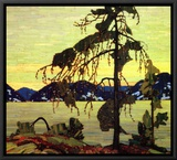 Jack Pine Framed Canvas Print by Tom Thomson