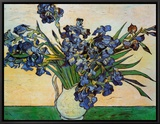 Vase of Irises, c.1890 Framed Canvas Print by Vincent van Gogh