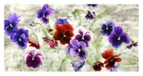 Field of Pansies Prints by Jenny Thomlinson