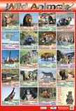 Wild Animals Posters