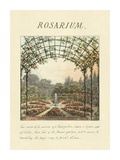 Rosarium, 1813 Prints by Humphry Repton
