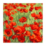 Poppies Posters by Silvia Mei