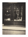 Zoologist's Shop Prints by Eugene Atget