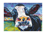 Curious Cow II Prints by Carolee Vitaletti