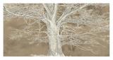 White Oak Prints by Alessio Aprile
