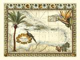 Mappa tropicale delle Indie occidentali Stampe di  Vision Studio