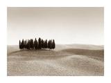 Tuscany Prints by Ilona Wellmann