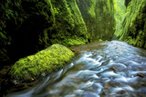 Gorge Green Photo by  PhotoDF