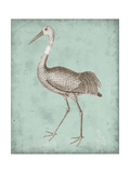 Sepia and Spa Heron IV Premium Giclee Print by  Vision Studio