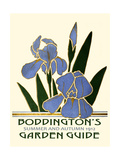 Boddington's Garden Guide IV Premium Giclee Print by  Vision Studio