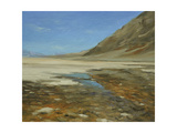 Badwater Basin, Death Valley Prints by Chuck Larivey