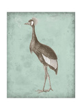 Sepia and Spa Heron II Premium Giclee Print by  Vision Studio