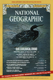 Cover of the December, 1970 National Geographic Magazine Photographic Print by Bruce Dale