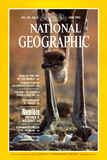 Cover of the June, 1982 National Geographic Magazine Photographic Print by Des & Jen Bartlett