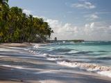 Praia Do Carneiros Near Tamamdere, North-Eastern Brazil Fotografisk tryk af Alex Saberi