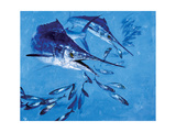 Two Spearfish and Mackerel Giclee Print by Stanley Meltzoff
