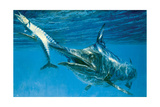 Black Marlin and Two Wahoo Giclee Print by Stanley Meltzoff