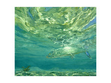Glittering Bonefish, 1988 Giclee Print by Stanley Meltzoff