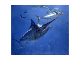 Black Marlin, Two Dogtooth Tuna and Needlefish Giclee Print by Stanley Meltzoff