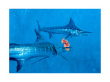 Two Striped Marlin and Iris Nudibranch Giclee Print by Stanley Meltzoff