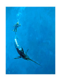 A Divers Farewell, 1976 Giclee Print by Stanley Meltzoff
