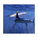 Two Striped Marlin and Turtle Giclee Print by Stanley Meltzoff