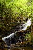 Macintosh Brook Waterfalls in Cape Breton Highlands National Park Photographic Print by Darlyne A. Murawski