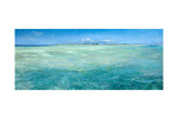 Bones Up with the Tide: a Panoramic Island View of Bonefish Searching for Food in Shallow Water Giclee Print by Stanley Meltzoff
