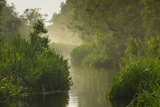 A Scenic and Misty View of the Crocodile River Photographic Print by Ralph Lee Hopkins