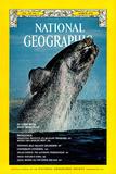 Cover of the March, 1976 National Geographic Magazine Fotografisk tryk af Des & Jen Bartlett