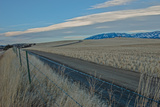 A Road Cuts Through Harvested Wheat Fields as Lenticular Clouds Hover over the Bridger Mountains Photographic Print by Gordon Wiltsie