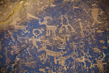Detail of a Large Panel of Petroglyphs at Sand Island Near Bluff, Utah Photographic Print by Scott S. Warren