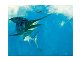 Blue Marlin and Lure in Wake, 1988 Giclee Print by Stanley Meltzoff