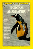 Cover of the November, 1971 National Geographic Magazine Photographic Print by Bill Curtsinger