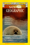 Cover of the January, 1976 National Geographic Magazine Photographic Print by Bill Curtsinger