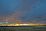 A Magnificent Sunset Sky over a Harvested Field in the Gallatin Valley, Montana Photographic Print by Gordon Wiltsie