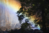 A Rainbow Below Yosemite Falls Photographic Print by Marc Moritsch