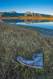 A Frosted, Abandoned Boot in Salt Grass by Big Alkali Lake Photographic Print by Gordon Wiltsie