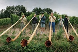 Men from Surrounding Villages Practicing on their Alpenhorns Along a Vineyard Road Lámina fotográfica por Macduff Everton