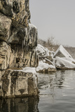 The Potomac River Shoreline Up from Angler'S Photographic Print by Irene Owsley