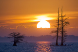 The Sun Rising over Blackwater National Wildlife Refuge Photographic Print by Robbie George