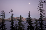 Treetops and the Rim of Crater Lake in Crater Lake National Park Photographic Print by Phil Schermeister